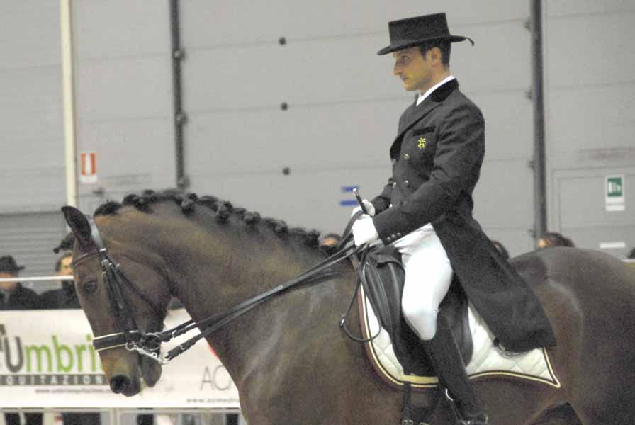 Cavalli a Roma 2015 – Le star del padiglione iberico