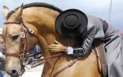 Con Aicl a Travagliato Cavalli 2016